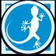 ICON-Gecko_rund_n5